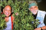Cheech & Chong's Up in Smoke Tour returns to the Pacific Northwest!